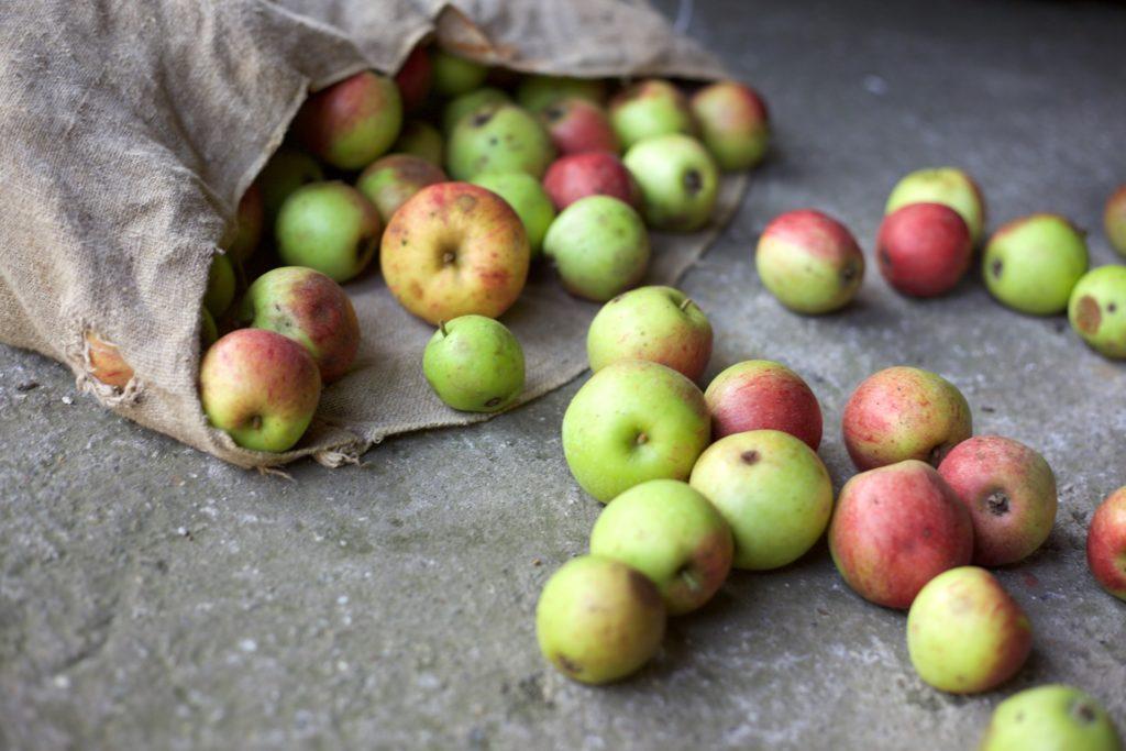 apple-3040132_1920
